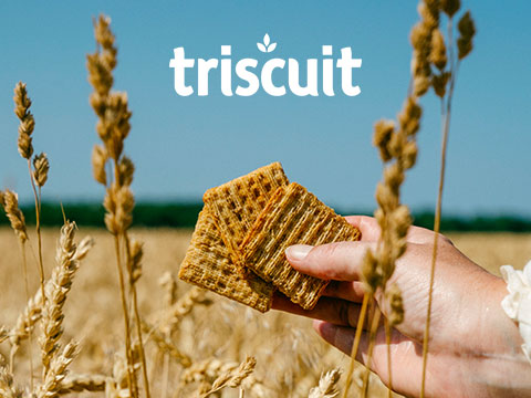 Triscuit case study cover photo, with Triscuit crackers in wheat field